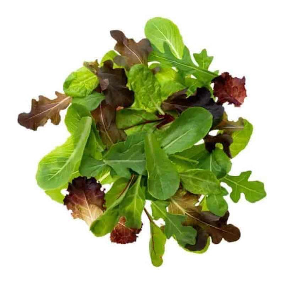 Baby Leaf Salad Bag - Get Fresh & Fruity