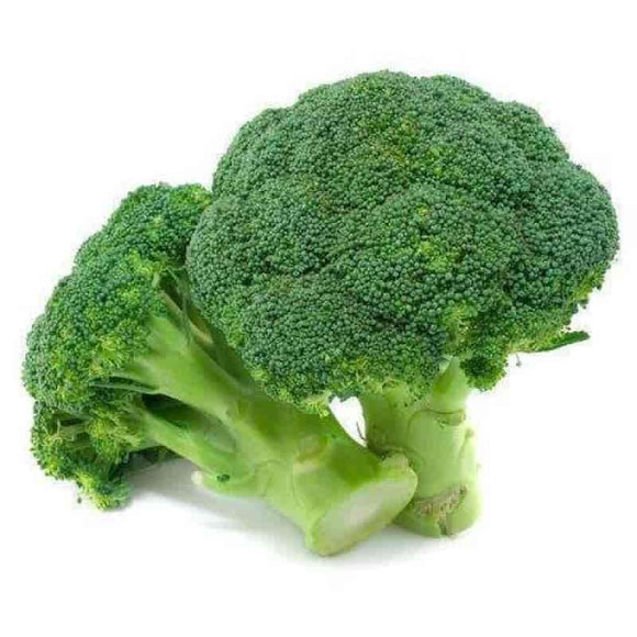 Broccoli Fresh Vegetables Class 1 Produce from Great Britain 40% off