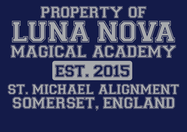 Luna Nova Magical Academy ( little witch academia ) Hooded sweatshirt.