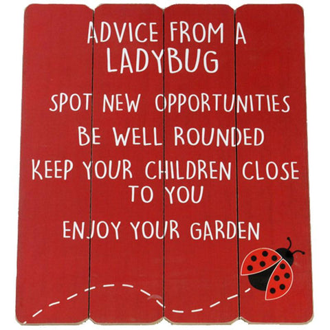 Advice from a Ladybug