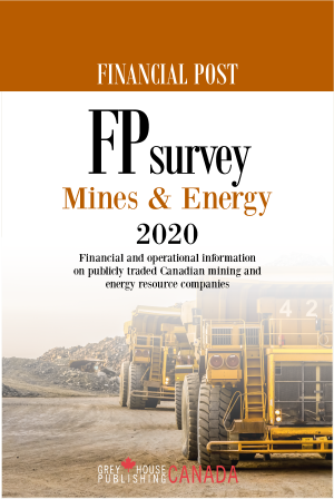 FPsurvey - Mines & Energy 2020