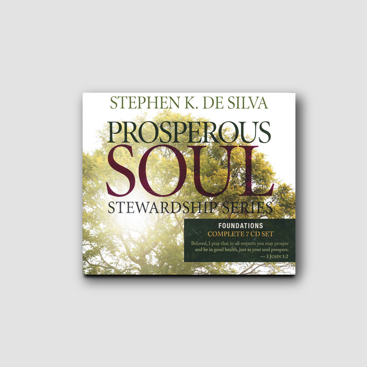 Prosperous Soul Foundations