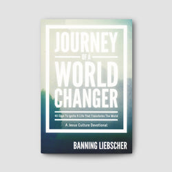 Journey of a World Changer Book