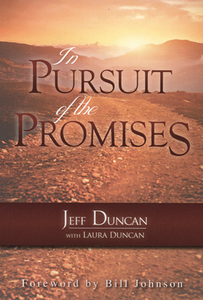 In Pursuit of the Promises