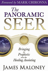 The Panoramic Seer