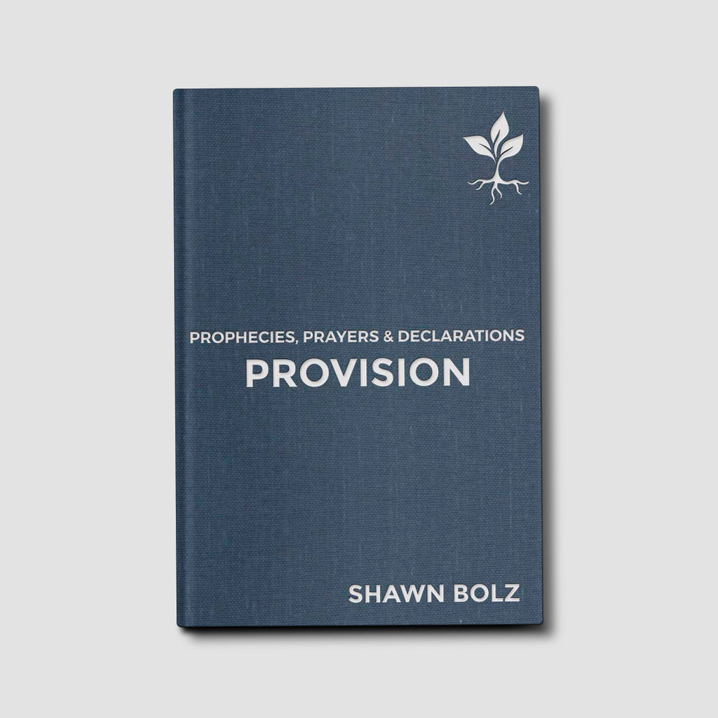 Pre-order Provision: Prophecies, Prayers & Declarations