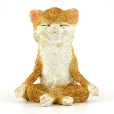 Cat in Meditation