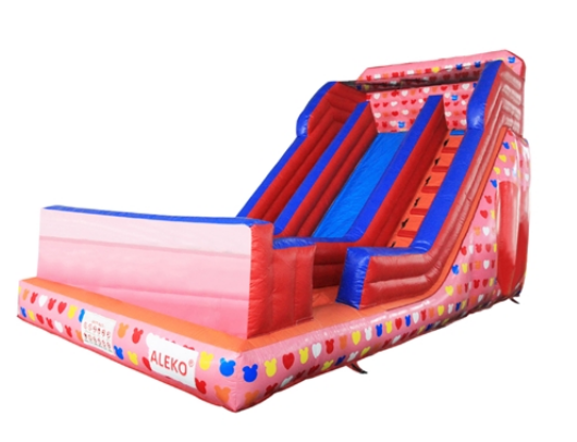 ALEKO Inflatable Slide - Wet n Dry - image 1