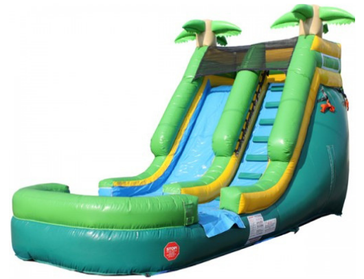 13'H Inflatable Water Slide Wet n Dry - the Outdoor Play Store