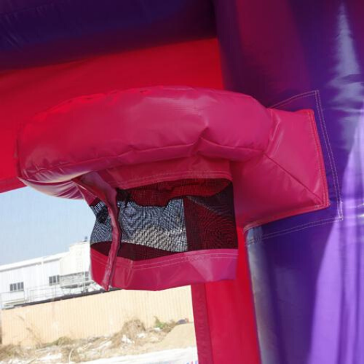 14' Pink Commercial Bounce House