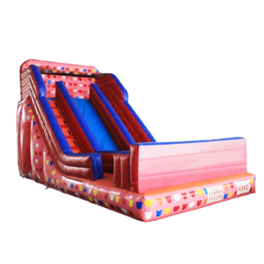 ALEKO Commercial Grade Water Slide wet/dry