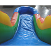Image of Palm Tree Residential Water Slide