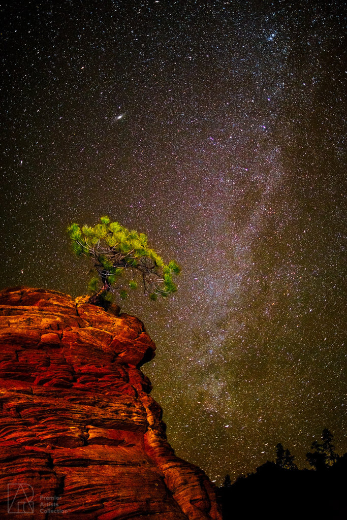 Milky Way in Zion - Alton Vance