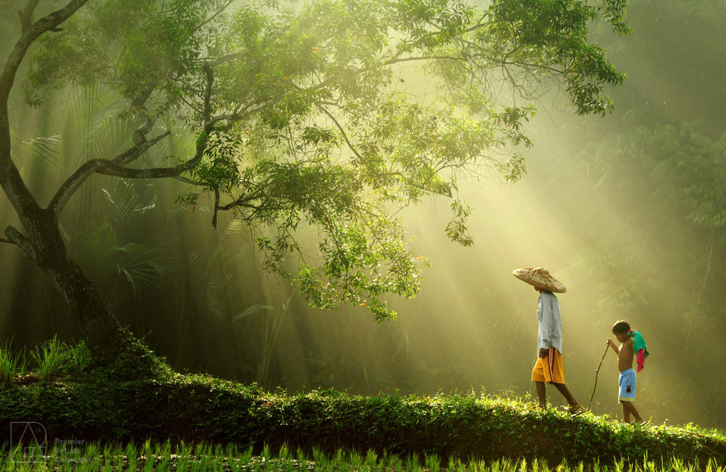 Journey to the Light - Rarindra Prakarsa