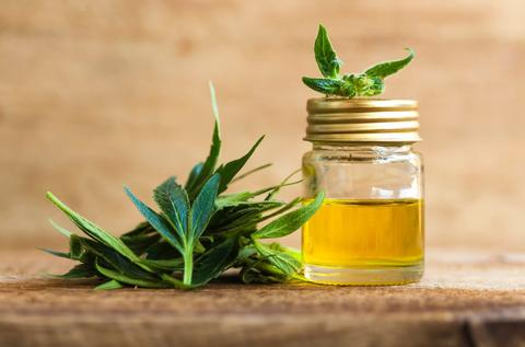 Your Ultimate CBD Cheat Sheet: 16 Essential Questions