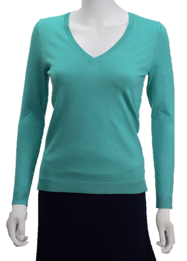 V- Neck Fitted Sweater