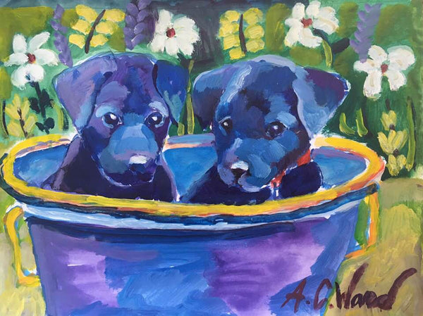 Twin Black Labs in a Metal Pail Print
