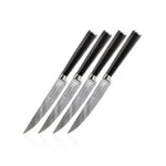 Chikara Series: 4 Piece Steak Set - Ginsu