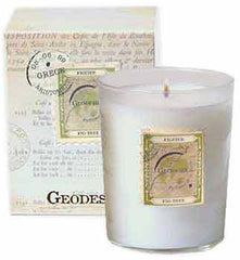 Geodesis Fig Tree 220g Scented Candle - Hampton Court Essential Luxuries