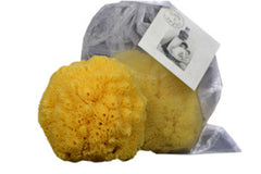 Boite a Savon - Large Fine Natural Sea Sponge - Hampton Court Essential Luxuries