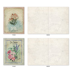 All Occasion Boxed Note Cards - Scentiments