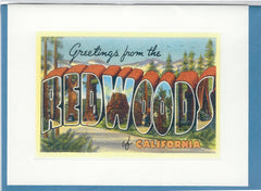 All Occasion Greeting Card - Greetings from the Redwoods Sparkle Card