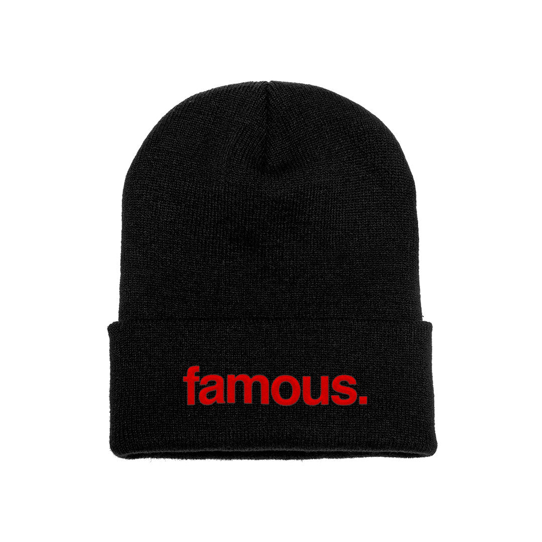 Fact Check Beanie