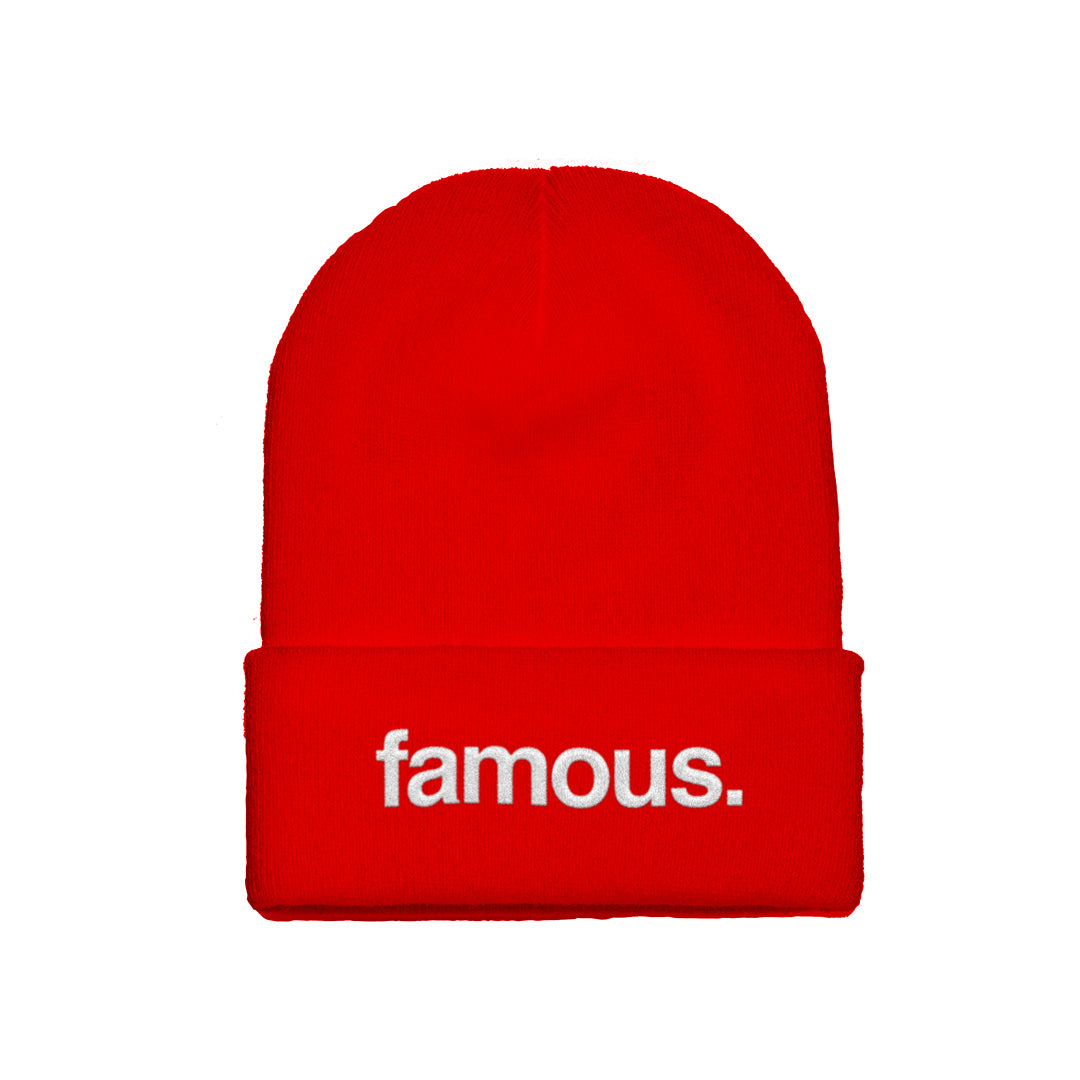 92ff0f9ccfa Fact Check Beanie – Famous Stars and Straps