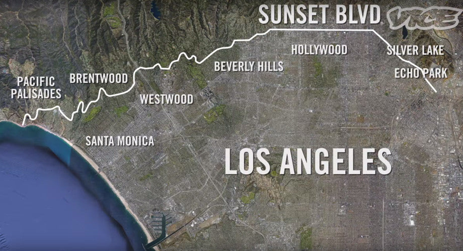 VICE Travels Through Sunset Boulevard's History