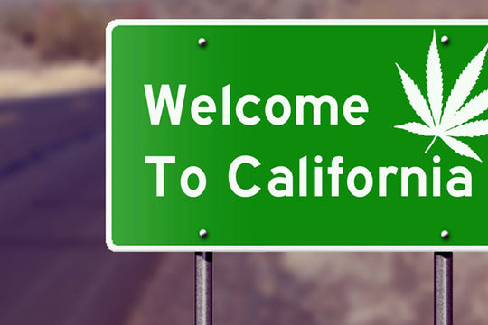 Green Rush :: What the Legalization of Weed in California Really Means