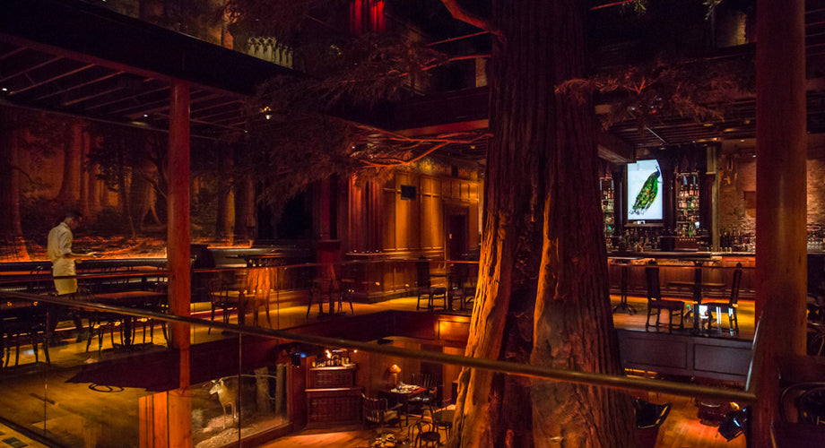 CLIFTON'S CAFETERIA RETURNS