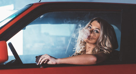 Smoked Out :: Emily Sears