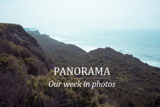 PANORAMA :: OUR WEEK IN PHOTOS :: 2.21.15