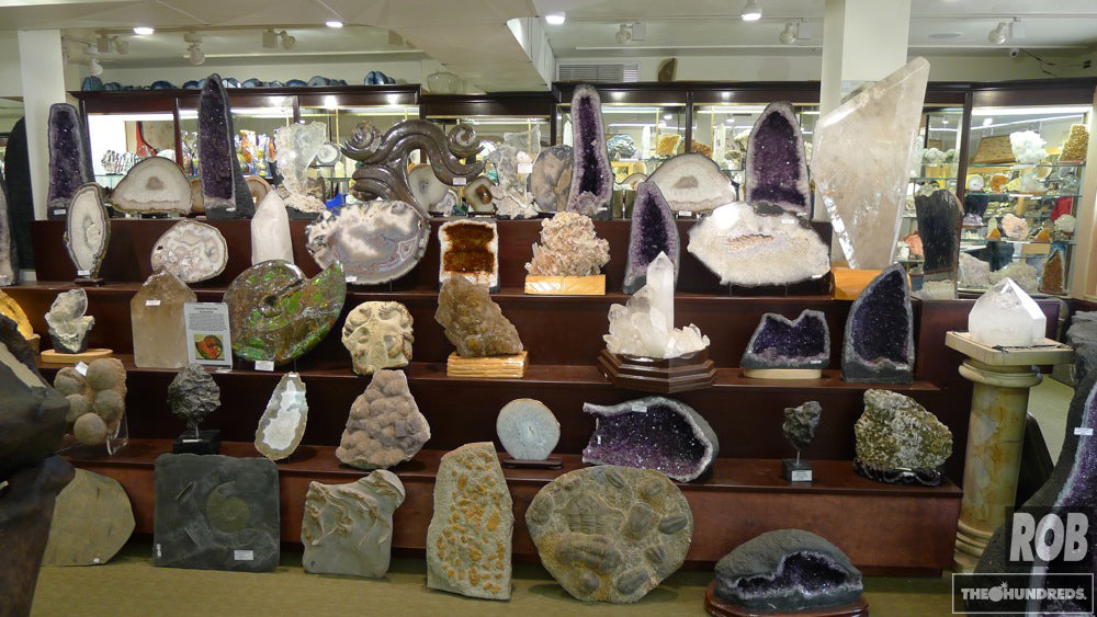 The World's Most Incredible Fossil and Mineral Shop