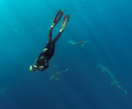 CROSS THIS OFF THE BUCKET LIST :: SHARK DIVING IN HAWAII