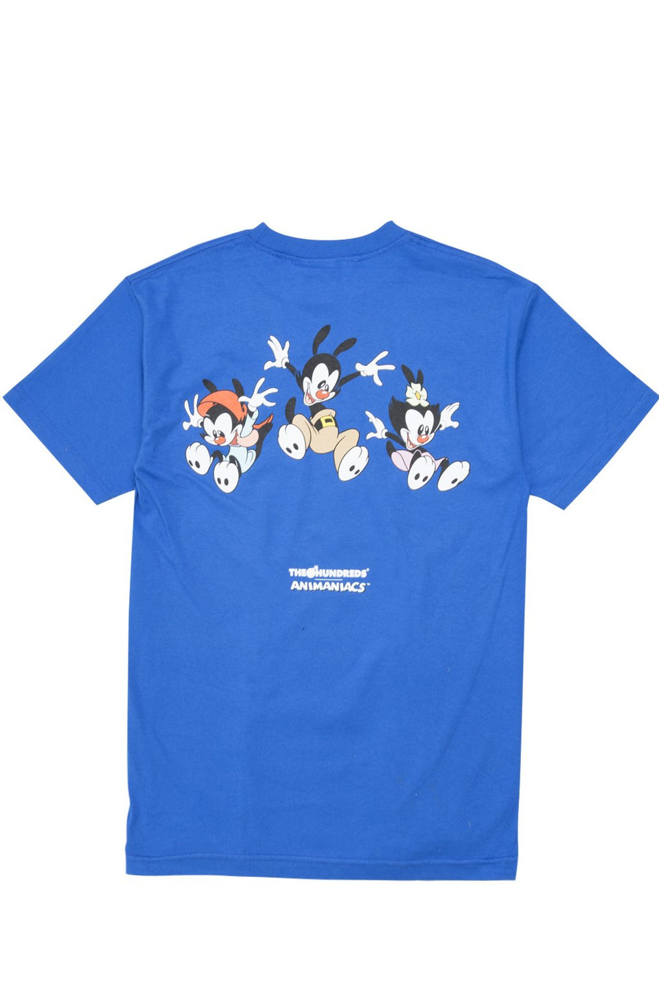 Animaniacs Falling T-Shirt