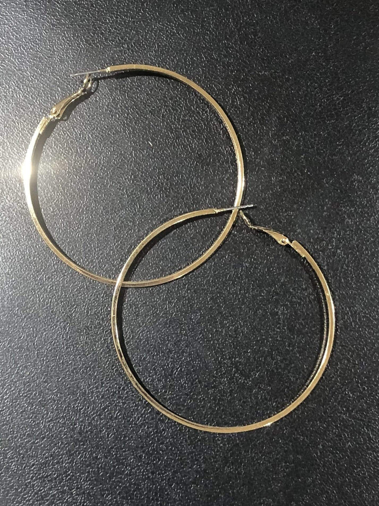 Accessorize In Style Fashion Earrings Gold Fashion Hoop Earrings - Silver or Gold