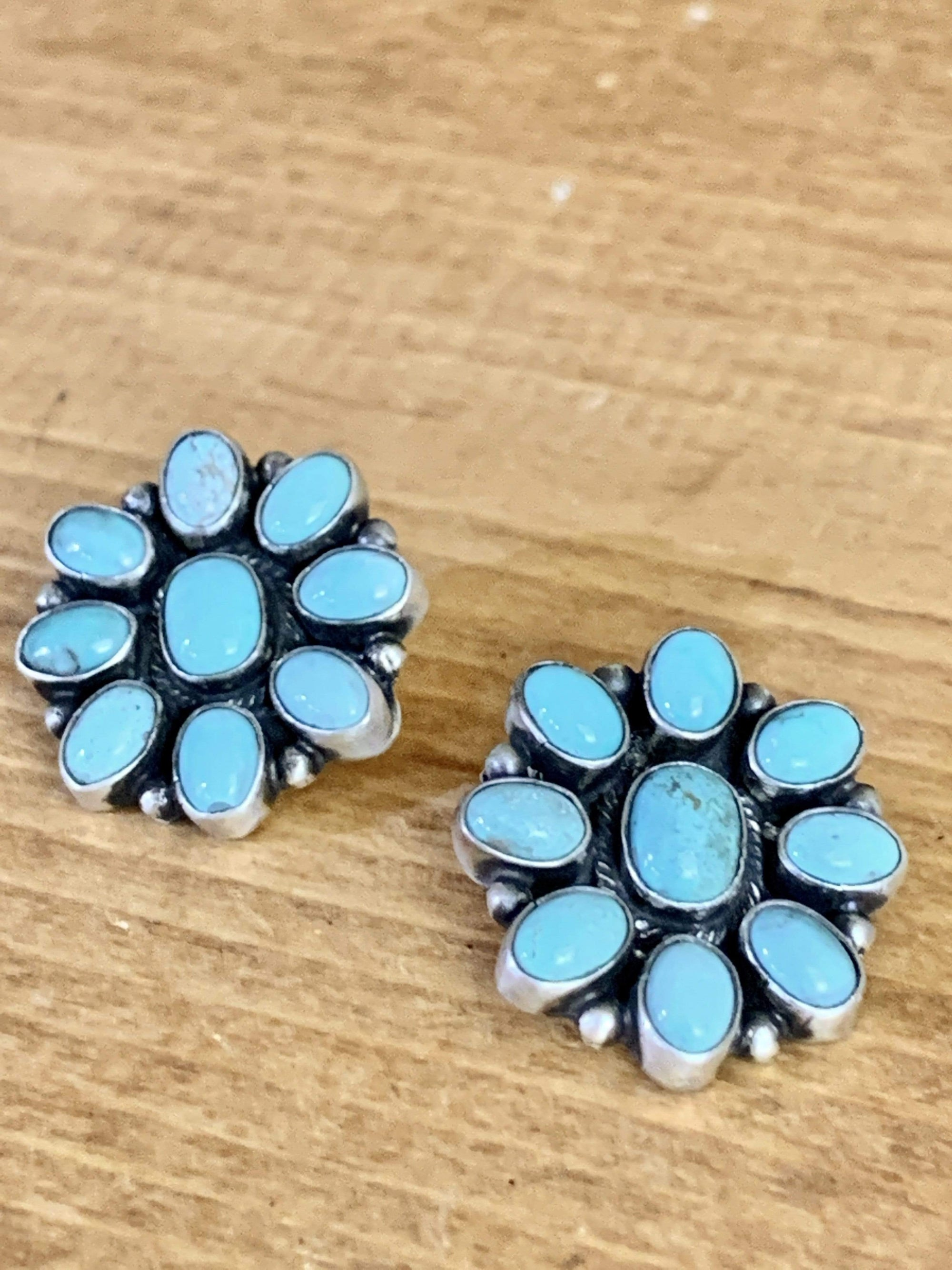 Accessorize In Style Sterling Earrings Shades of Blue Sterling & Turquoise Earrings