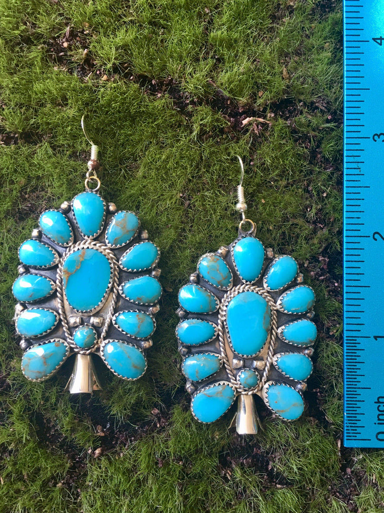 Accessorize In Style Sterling Earrings Turquoise Squash Earrings