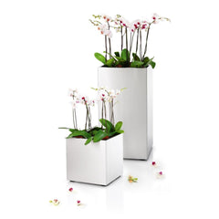 blomus Greens Cube Planter with Liner