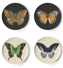 Coasters - Thomaspaul Metamorphosis Coaster Set, Set Of Four