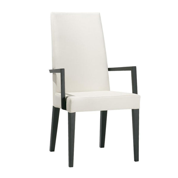 Dining Chairs - Anna Luxe SO1399 Armchair
