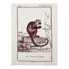 Dish Towels - Clignancourt Tea Towels - Monkey