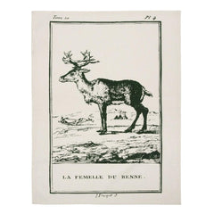 Dish Towels - Clignancourt Tea Towels - Reindeer