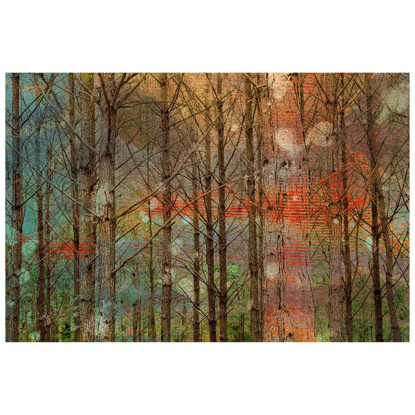 Posters & Prints - Through The Trees Painting