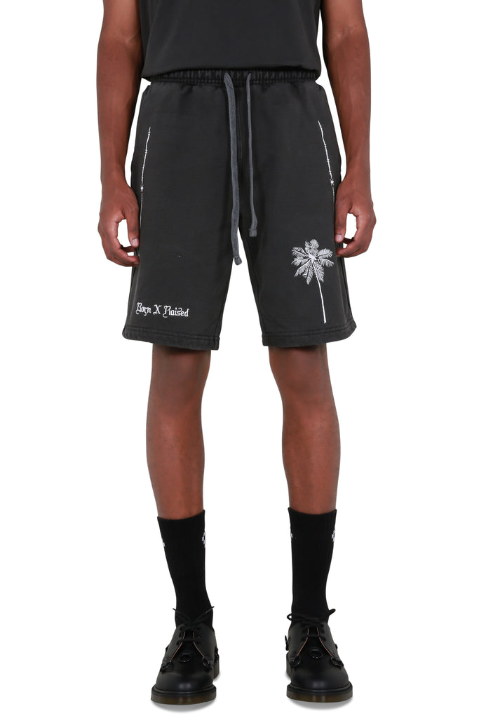 Palm Tree Shorts - Black