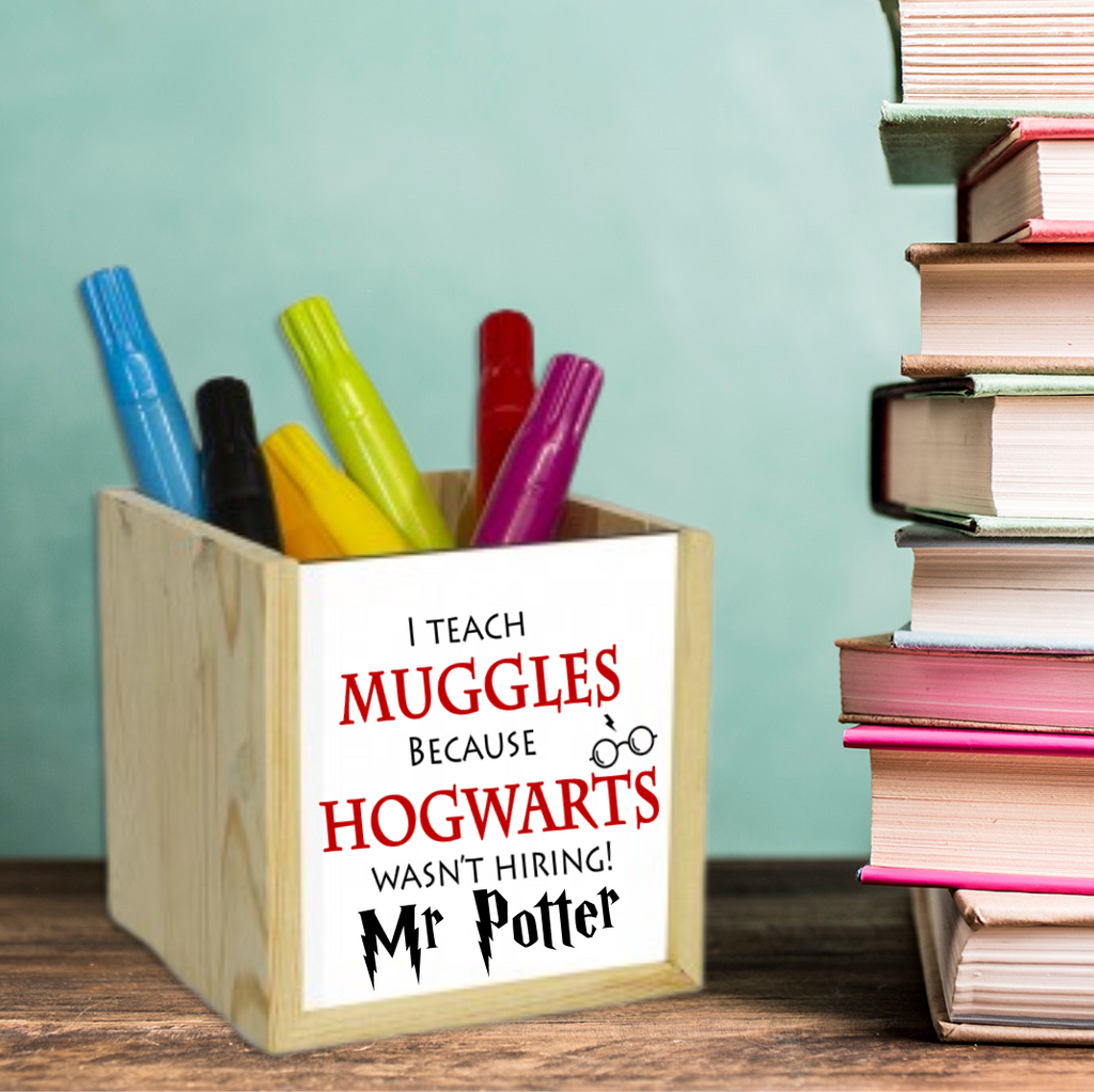 I Teach Muggles Pen Pot - Mugged Write Off