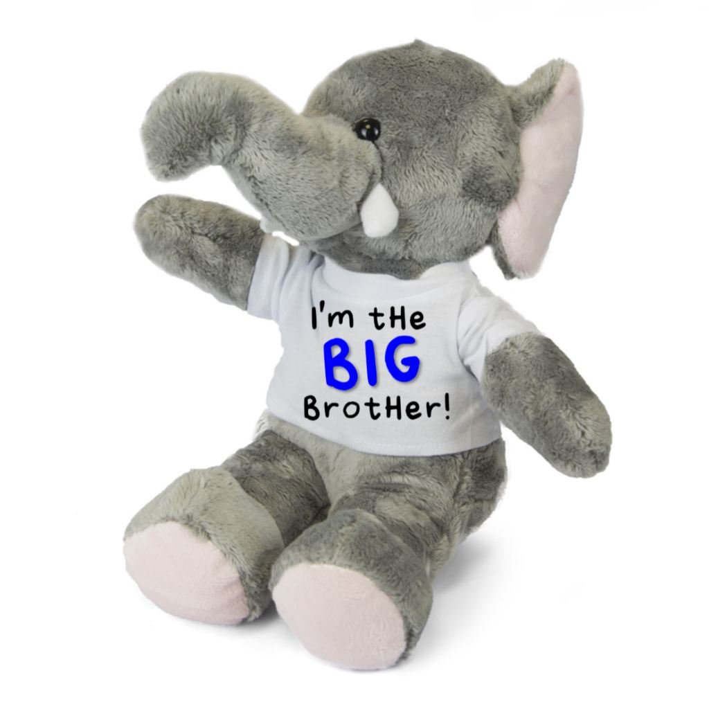 I'm The BIG Brother LITTLE Sister Personalised Elephant Teddy - Mugged Write Off