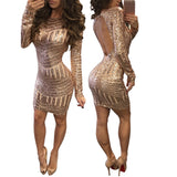 Sequined Leakback Bodycon Dress