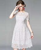 Ivy Lace Dress (Non-Returnable)